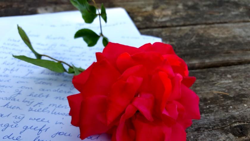 Love Letter…..